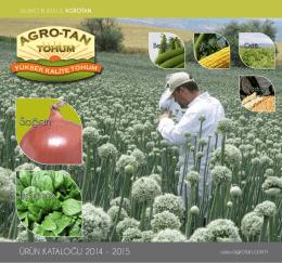Ispanak Soğan - agro