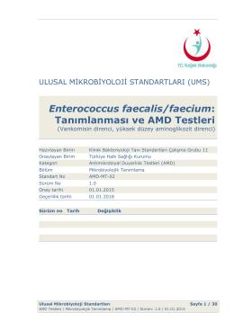 Enterococcus faecalis/faecium ve AMD testleri