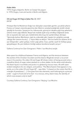 (pdf) - SALT
