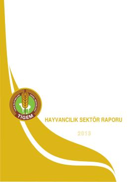 2013 tıgem hayvancılık sektor raporu