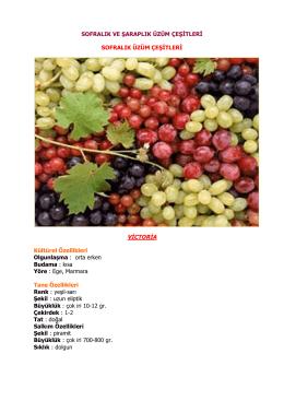 Sofralık ve Şaraplık Üzüm Çeşitleri