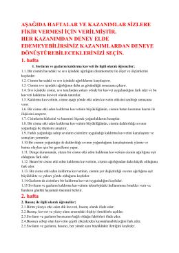 deney_konuları_pdf hali