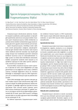 Sperm kriyoprezervasyonu: Kriyo-hasar ve dna