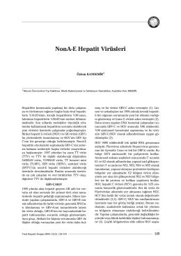 NonA-E Hepatit Virüsleri