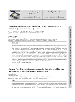 Mathematical Modelling of Convection Drying Characteristics of