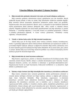 Yönetim Bilişim Sistemleri Çalışma Soruları