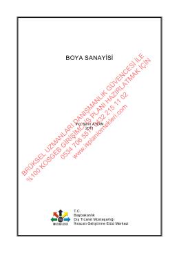 2014 boya imalatı girişici iş planı örnek dosyası