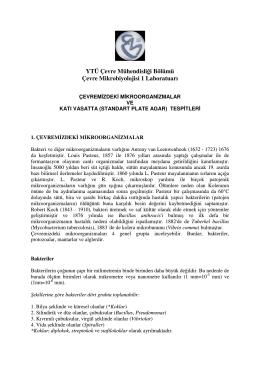 YTÜ Çevre Mühendisliği Bölümü Çevre Mikrobiyolojisi 1