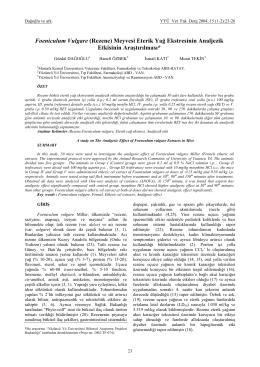 (23-26 Foeniculum Vulgare _Rezene_ H. özbek 4)