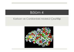 BÖLÜM 4.pptx - Prof. Dr. Bektaş TEPE