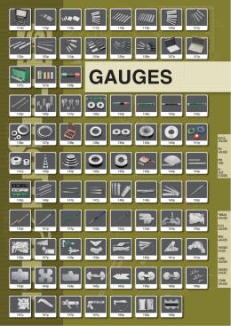 GAUGES - Instro