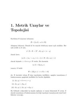1. Metrik Uzaylar ve Topolojisi