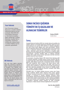 Raporun tamamına PDF formatında ulaşmak için lütfen