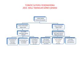 türkiye sutopu federasyonu 2015 yılı milli takımlar