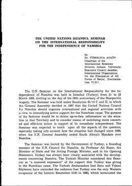 THE UNITED NATIONS ISTANBUL SEMINAR ON THE