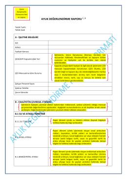 Aylık Değerlendirme Raporu Formatı