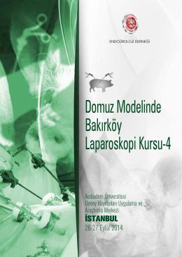 Domuz Modelinde Bakırköy Laparoskopi Kursu-4