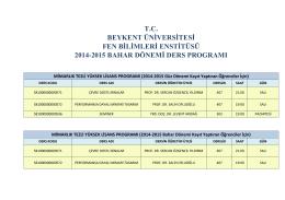 tc beykent üniversitesi fen bilimleri enstitüsü 2014