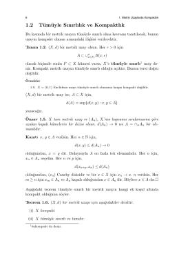 1.2 Tümüyle Sınırlılık ve Kompaktlık