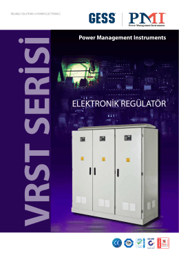 ELEKTRONİK REGÜLATÖR