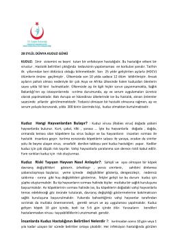 Dünya Kuduz Günü - İstanbul Anadolu Güney Kamu Hastaneleri Birliği