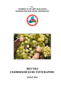 2013 Kuru Üzüm Raporu - Gümrük ve Ticaret Bakanlığı