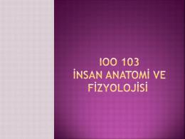 IOO 103 SUNU 1 - BOZOK ÜNİVERSİTESİ Personel Bilgi Sistemi