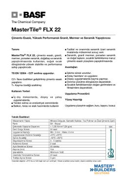 MasterTile® FLX 22