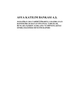 30 Haziran 2014 - Solo Bağımsız Denetim Raporu