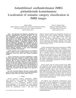 Anlambilimsel sınıflandırılmanın iMRG görüntülerinde