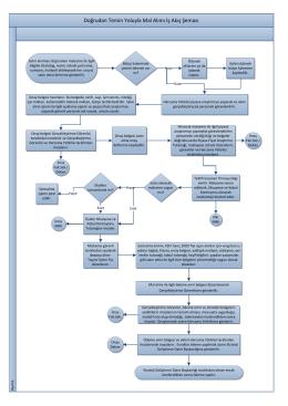 24- Doğrudan Temin Yoluyla Mal Alımı İş Akış Şeması
