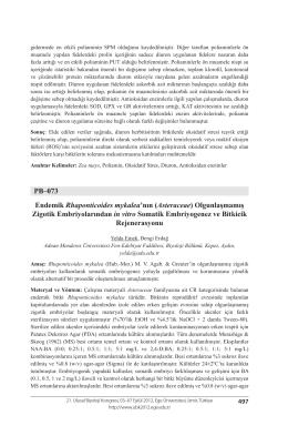 Asteraceae - Biyoloji Kongreleri