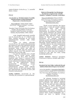 Anoxybacillus sp. 13K Bakterisinden Termofilikrabinofuranosidaz