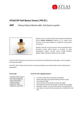 ATLAS DP Fark Basınç Vanası ( PN 25 )