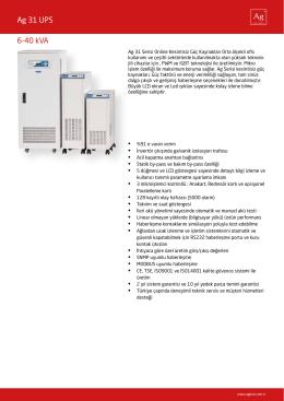Ag 31 UPS 6-40 kVA