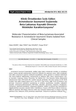 Klinik Örneklerden İzole Edilen Acinetobacter baumannii Suşlarında