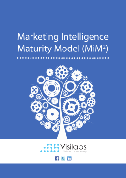 Marketing Intelligence Maturity Model (MiM2)