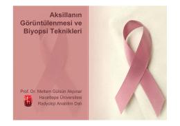 Prof. Dr. Meltem Gülsün Akpınar