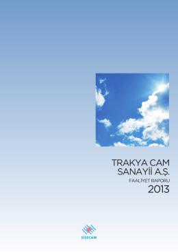 Faaliyet Raporu - 2013