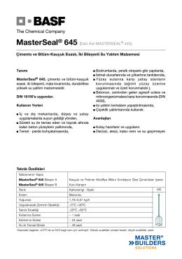 MasterSeal® 645 (Eski Adı MASTERSEAL® 445) Çimento