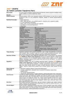 603-ZNR CEOFIX Isı Yalıtım Levha Yapıştırıcısı-D