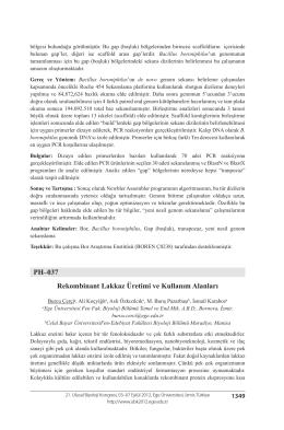 Rekombinant Lakkaz Üretimi ve Kullanım Alanları