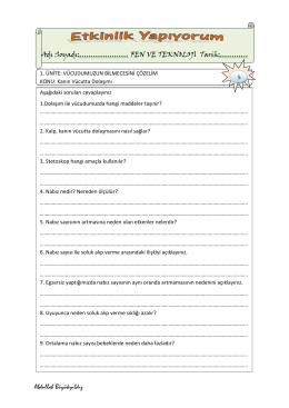 4.Sınıf Kan Dolaşımı Soru ve Boşluk Doldurma Etkinliği