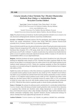 Cetraria islandica Liken Türünün Tip 1 Diyabet OluşturulanRatlarda