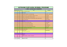aotravma ileri kursu bilimsel programı