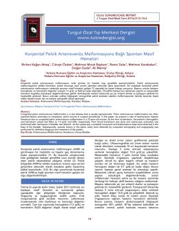 Tam Makale/PDF