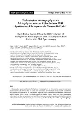 Trichophyton mentagrophytes ve Trichophyton rubrum Kökenlerinin