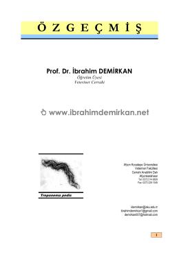 ÖZGEÇMİŞ (Tıklayınız) - Prof.Dr.İbrahim Demirkan
