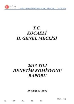 2013 denetim komisyonu raporu 28.02.2014