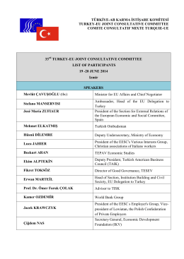 33 TURKEY-EU JOINT CONSULTATIVE COMMITTEE LIST OF